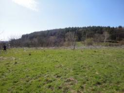 We offer a plot with an Old house in a village, situated 8 km from the town of Topolovgrad and 30 km from Elhovo, at the foot of Sakar Mountains.