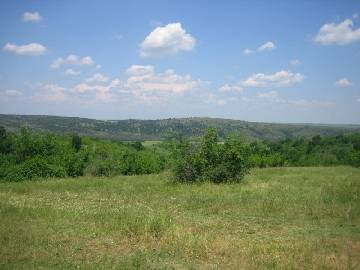 VL 592 Cheap plot of land from Haskovo region!